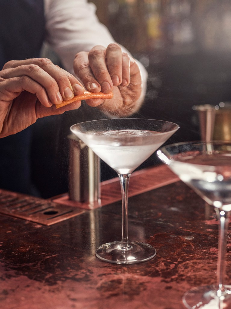 Tanqueray_10_Martini_Craft_w3
