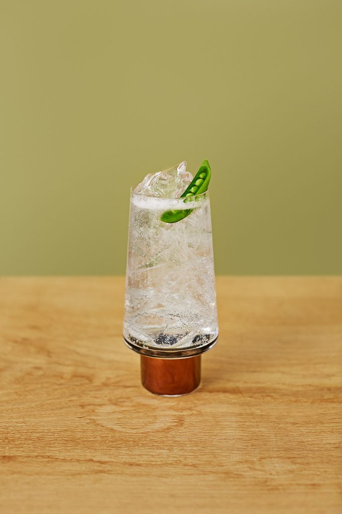 RL Seedlip Cocktail Book Garden Tonic Pea W1 | Seedlip
